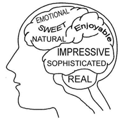sound-categories-brain-4